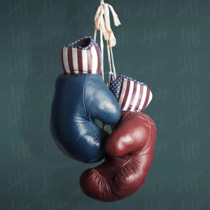 An image shows one red United States boxing glove side-by-side with one blue United States boxing glove. This picture represents the idea of Democrats vs Republicans and is pictured in Balanced Achievement's article on the psychology of political campaign advertising.