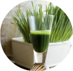 wheatgrass-skin-benefits