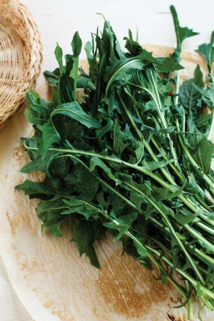 dandelion-greens-for-digestion