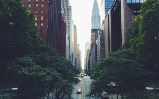 how-to-connect-with-nature-in-a-big-city