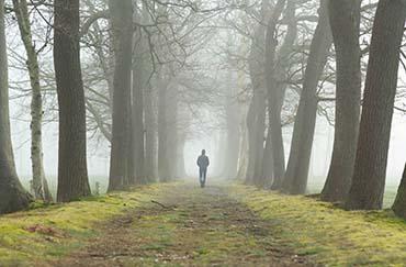 A lone man walking in a misty wood