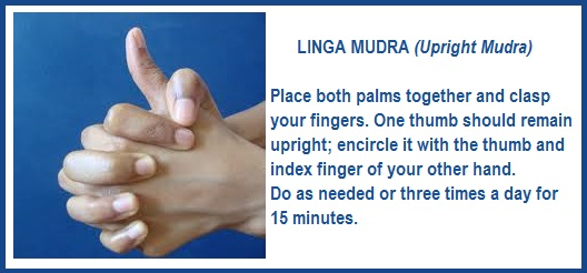 Yoga Hand Mudras Meaning