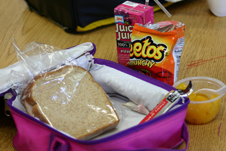 Earth Day lunch box