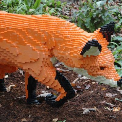 Lego Sculptures at NC Arboretum