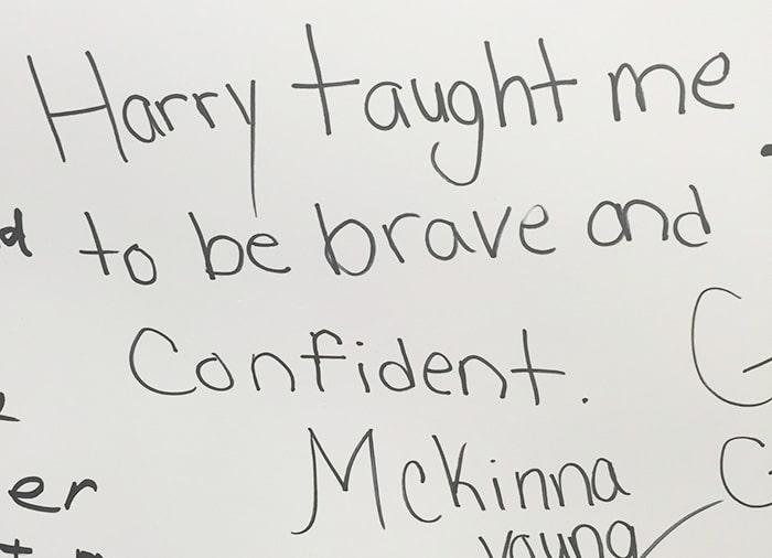 Harry Potter_confident