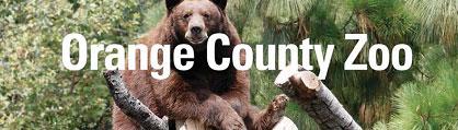 Bear Awareness Day, OC Zoo