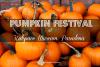 Pumpkin Festival Kidspace Museum