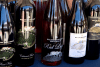 Wines from Great Wine Festival