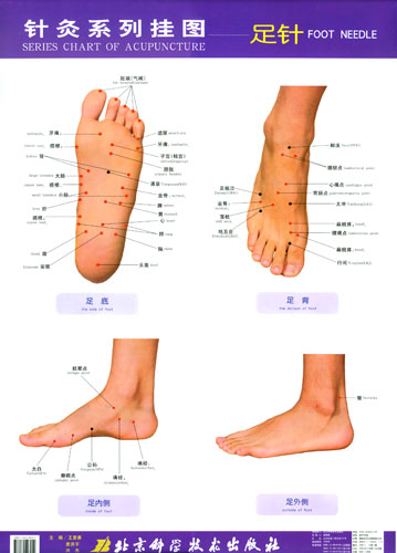 Why are there Different Reflexology Charts | Balancing ...