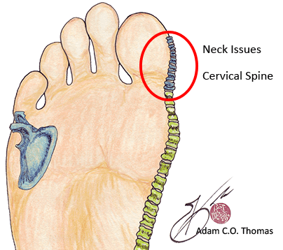 neck issues are found on the side of the foot
