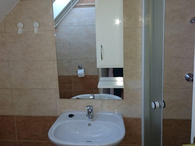 Meiszter Apartman Balatonlelle, fürdő 5