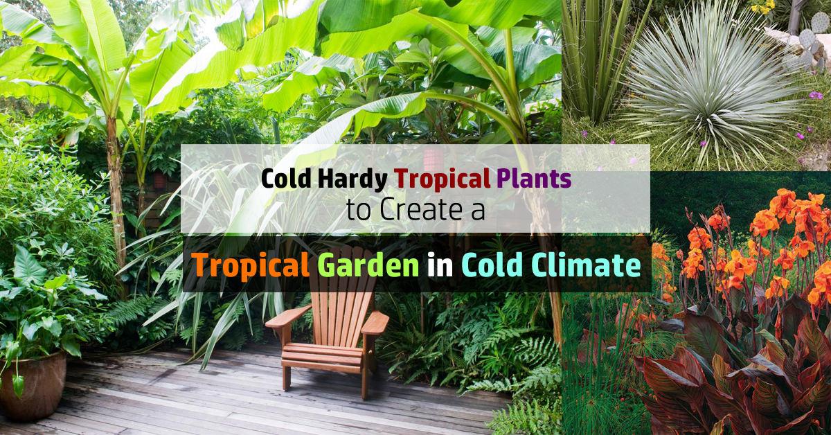 Best Garden Border Designs