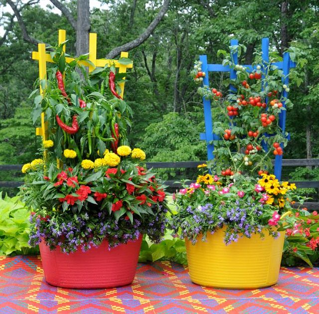 15 Stunning Container Vegetable Garden Design Ideas Amp Tips