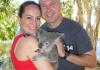 Australia discounted flights trick with koala at Billabong in 2014