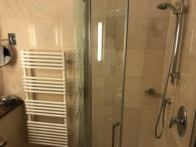 Hyatt Regency Palais de la Mediterranee standard king shower