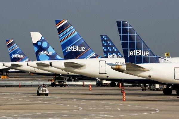 JetBlue tailfins blueberries