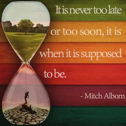 Quotes Mitch Albom