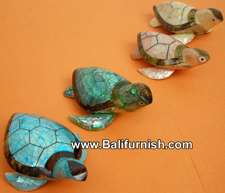 sea shell turtle carvings