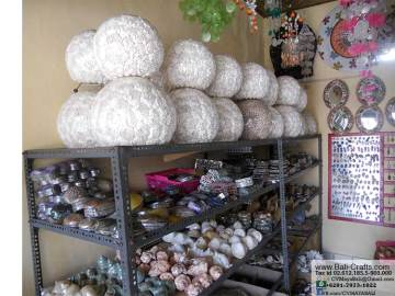 Sea Shell Shop in Bali Indonesia