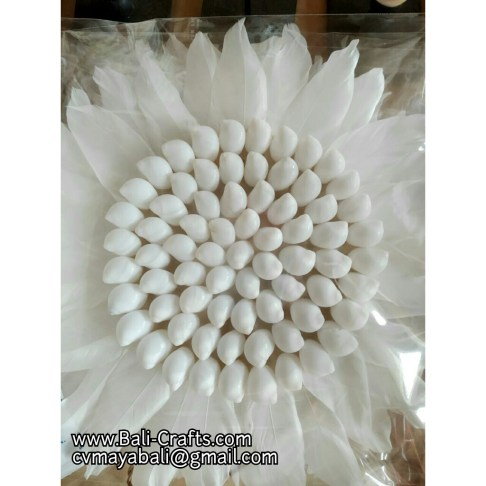 shell819-11-sea-shell-crafts-indonesia