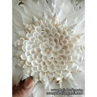 shell819-4-sea-shell-crafts-indonesia