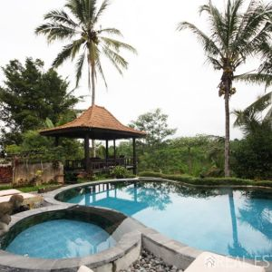 Freehold Villa For Sale in Ubud