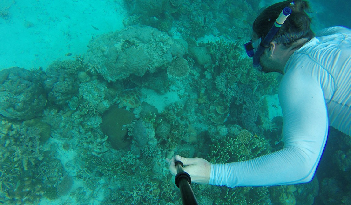 Semporna - Borneo - Malaysia - Island - Underwaterselfie with a turtle