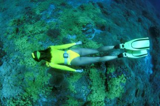 bali, lovina, place, place of interest, place to visit, activities, adventure, diving
