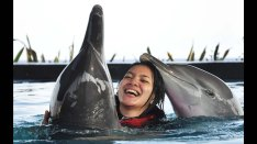 bali, adventure, wake adventure, bali wake adventure, activities, swimming, dolphin, swimming with dolphin