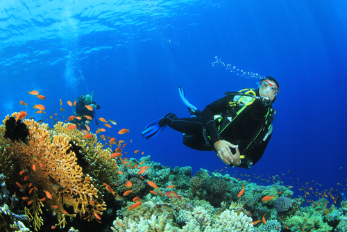 bali, lovina, place, place of interest, place to visit, activities, adventure, snorkeling