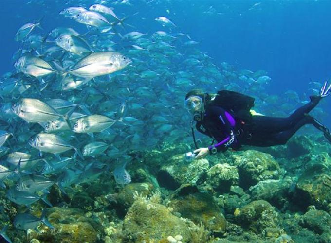 Your Best Local Guide in Bali