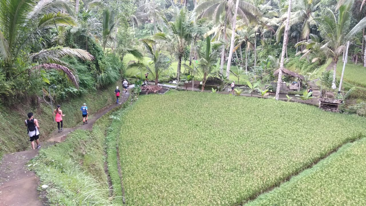 Bali Hash House Harriers 2 Tegalallang Run Photos