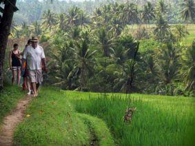 trekking-ricefield
