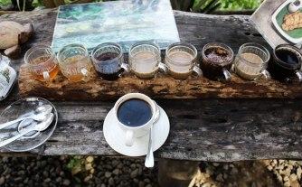 balinese-coffee-tasrer