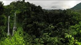 Amazing view of Sekumpul Waterfalls