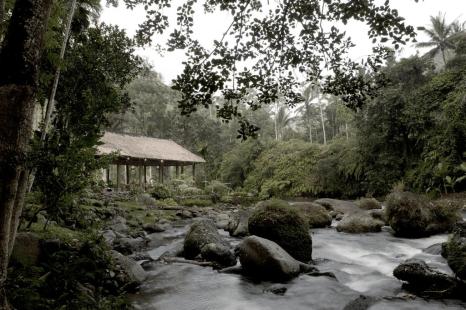 royal-pitamaha-ubud-bali-jungle-trekking-tour-and-guide