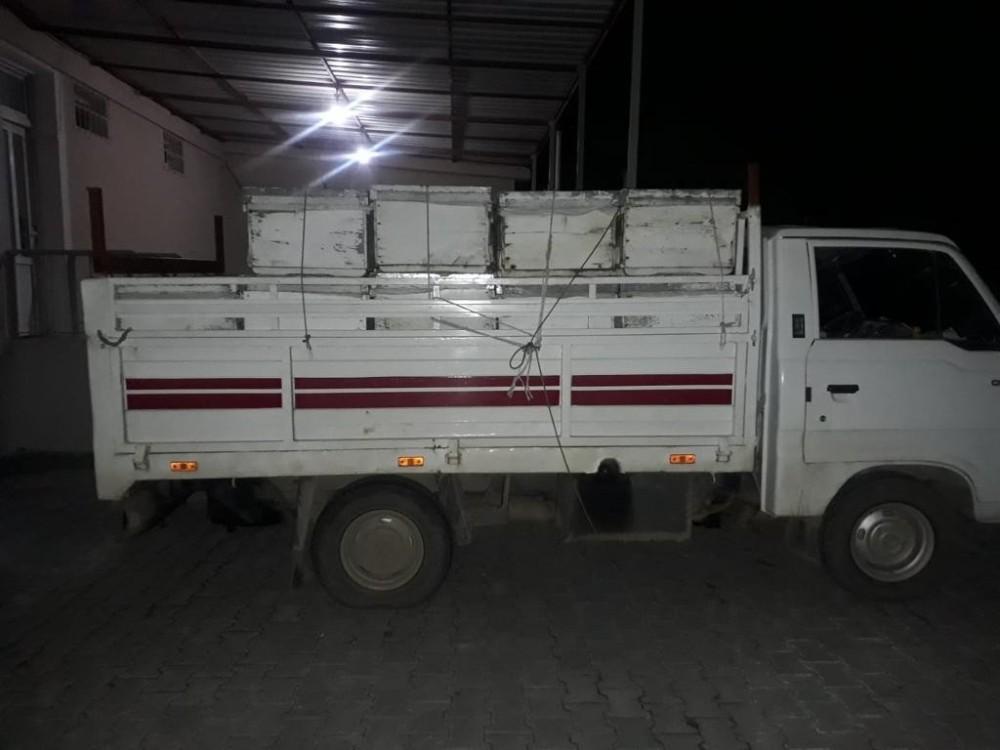 Burhaniye'de arı hırsızı jandarmadan kaçamadı