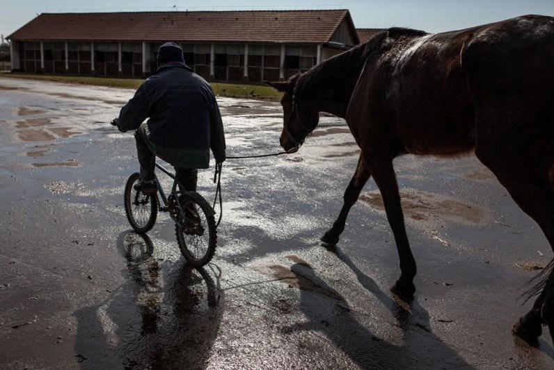 Aki lovasterápiára érkezik, végig kell haladnia az istállók sorai között, és átélheti, amint a város szagát hirtelen felváltja a széna és a lovak illata. Ahogy elhagyjuk az utolsó istállót is, végképp elmaradoznak az autók, és a négylábúak mellett olykor kétkerekűek tűnnek fel - ha éppen máshogy nem lehet nyeregbe pattanni.