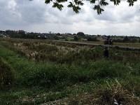 Land 1382 m2 LCGU 138 for sale in Canggu Bali