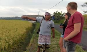 Bali Excursies Vanuit Seminyak