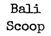 Bali Scoop
