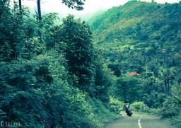 Balade dans la jungle d'Amed, Jemeluk et Bangle en scooter - Bali, Karangasem, Indonesie