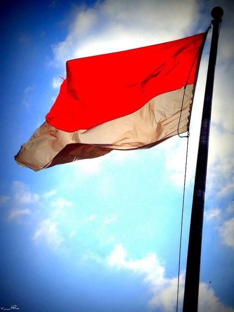 Drapeau indonésien rouge et blanc