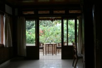 Grande vitre - Ubud Terrace, Bali