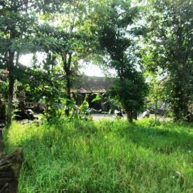 Se loger à Ubud - White House Bali - Copyright Balisolo 2013 (18)
