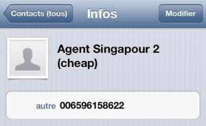 Coordonnées agent pour visa Indonesie à Singapour