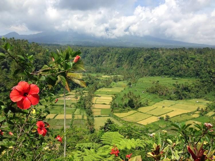 3 jours à Ubud  - Padoune interview Balisolo