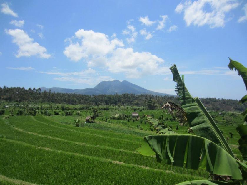 De la Lorraine à Bali en voyage organisé - Interview I went to bali too! (2)