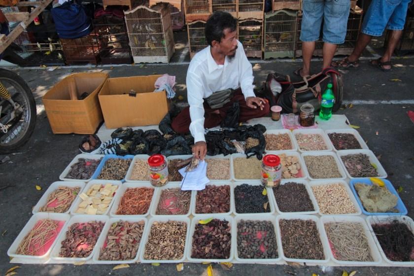 Une journée à Denpasar avec Made Widiastika_Balisolo-9