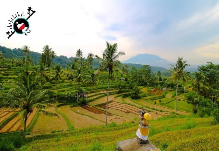 Découverte de Sidemen à #Bali grâce au blog @balisolo #concours #photo #balisoloetmoi Participant : Julia B. (Participation Twitter)